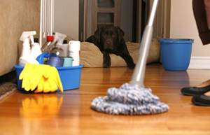 limpieza del hogar en granada